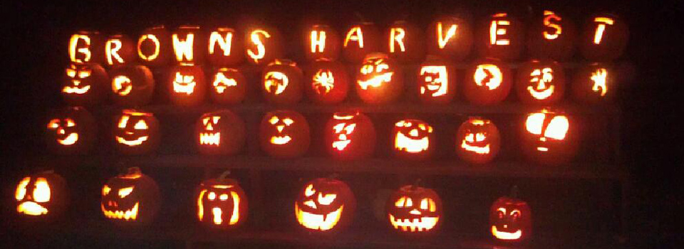 Jack-o-Lanterns-Browns-Harvest960x350