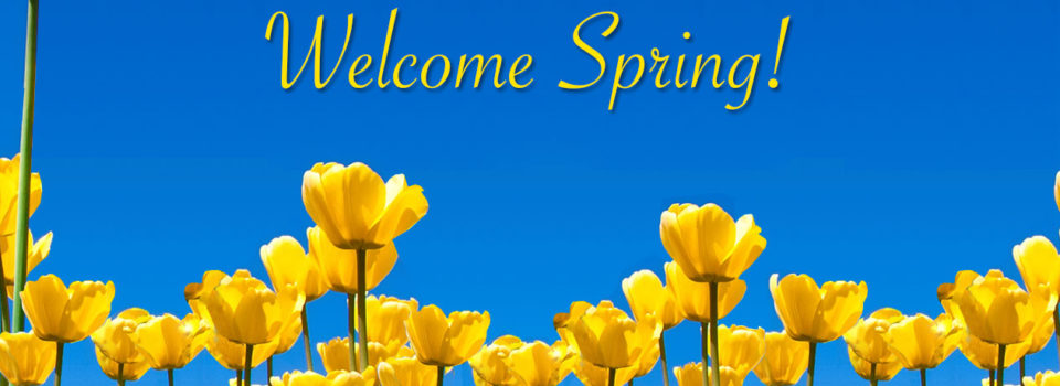 Welcome-Spring-Banner-final-bg
